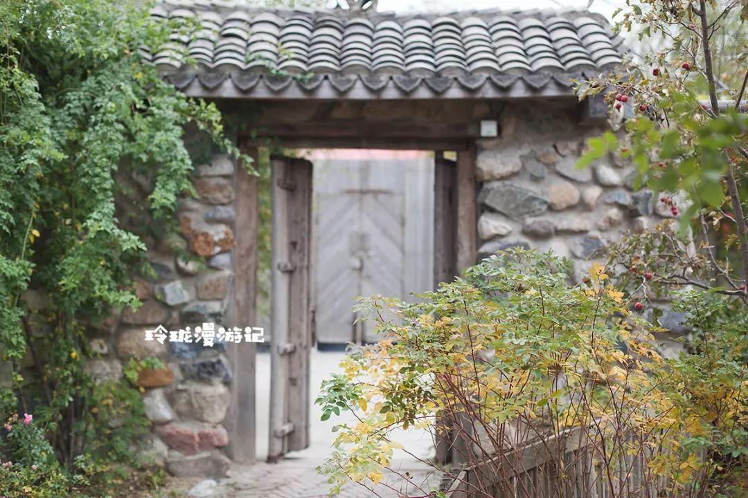 低矮的房屋門口排著躺椅