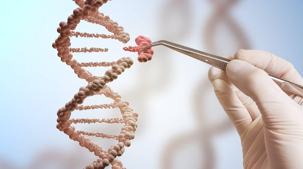 基因编辑婴儿的伦理问题【ZZ】