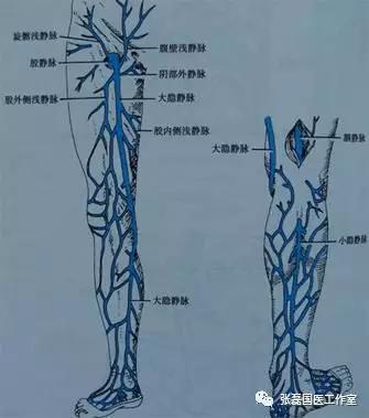 老烂腿是什么病?如何治疗?——岳阳医院张磊科普系列