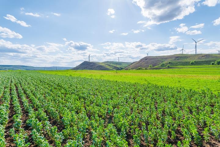 河北省公布省级环境保护督察交办问题整改情况