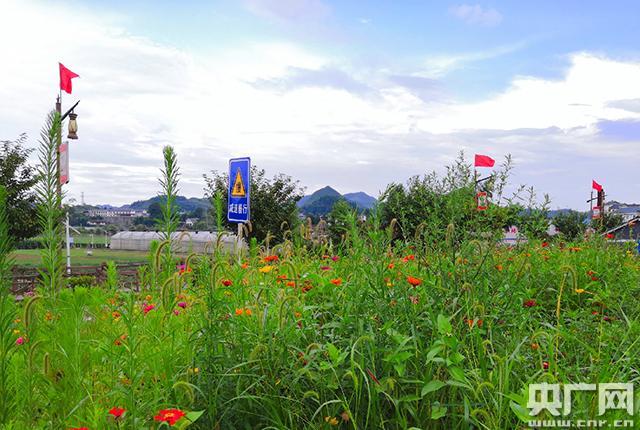 <b>记者手记:走在贵州大山的脱贫路上</b>