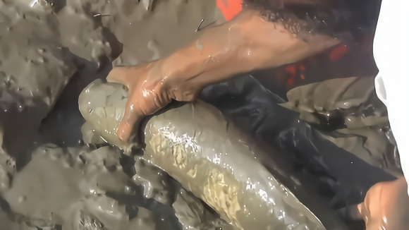农村俩小伙发现一条被冻住的大鱼,破冰取出来后傻了