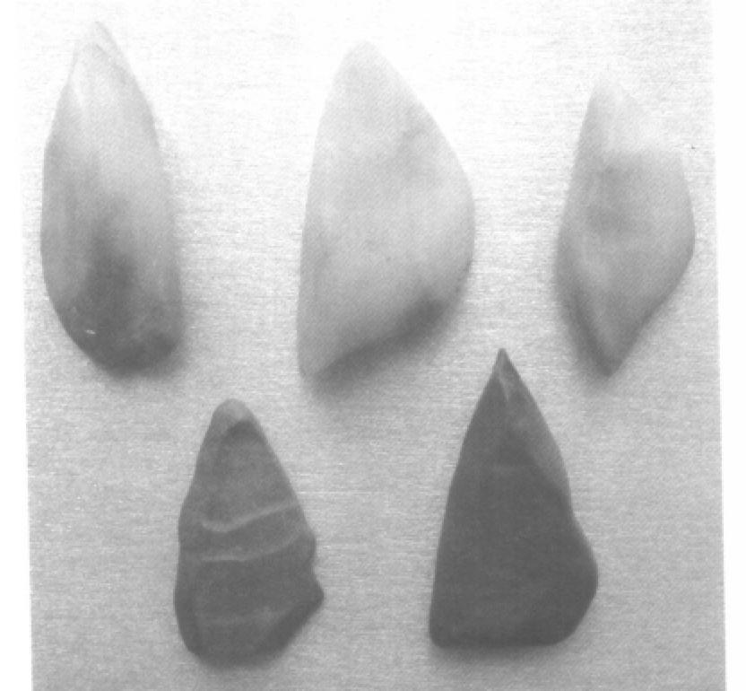 也是名贵的玉石种类之一