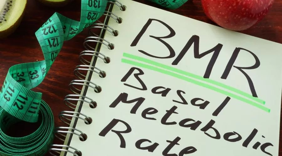 瘦身之前,先澄清这些关于「基础代谢」的本相