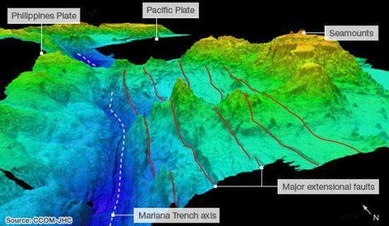 马里亚纳海沟底部有鱼类生存吗?不仅有,而且还很漂亮!