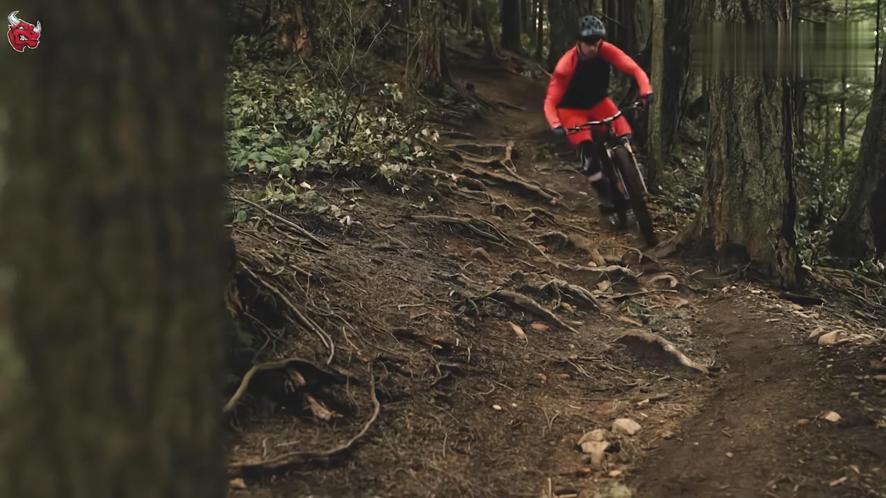 十佳山地自行车越野视频:唯爱清晨的小树林