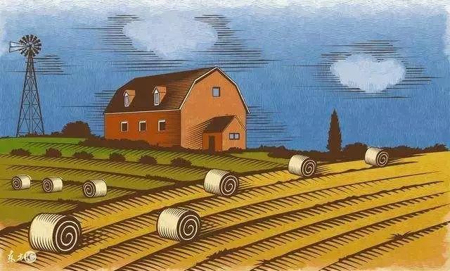 旧貌换新颜  我国农业发展取得显著成就