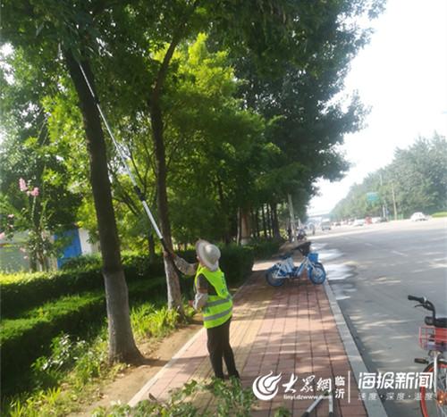 """沂蒙凡人说(36)临沂37℃进入""""高烤""""模式 他们依然坚守一线"""