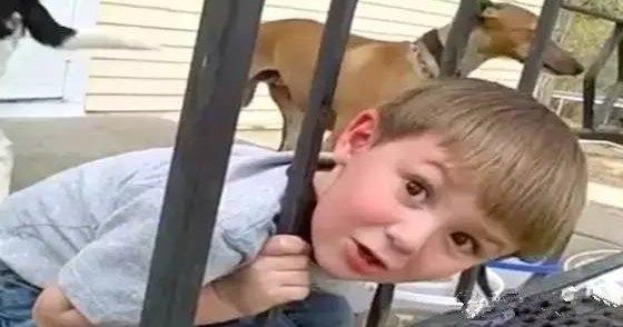 美国小男孩头卡在栏杆上动弹不得,父母处理方式 令国