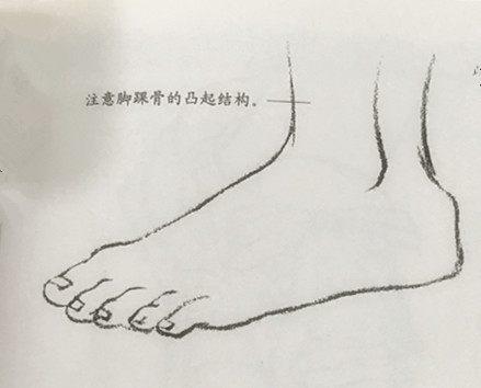 [推荐]怎么画插画人物脚部结构