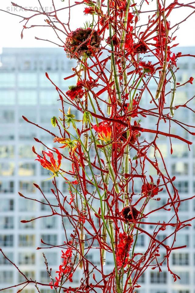 今天,就让你领略一下这2场京城最顶尖的花艺设计!