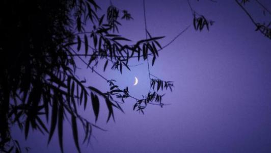 平安夜只想悄悄说给你听的情话:入我相思门,知我相思苦