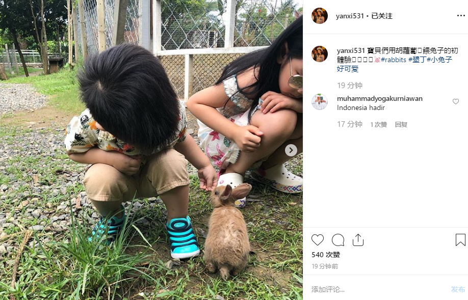 陈妍希罕见晒儿子玩耍照片,3岁小星星肉嘟嘟发量惊人