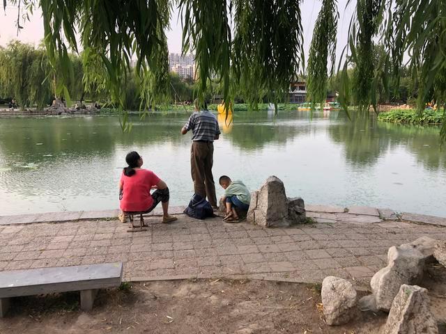在城区自怡园,市民带着孩子在湖边钓鱼。