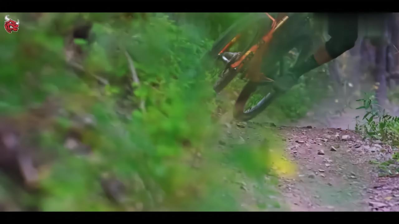 十佳山地自行车越野视频:偏爱清晨与黄昏