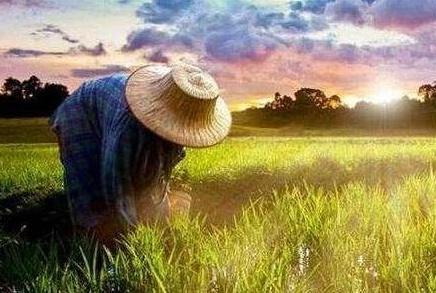 农民工创业项目_市场不景气的环境下,农民工返乡创业将会面临哪些难题?