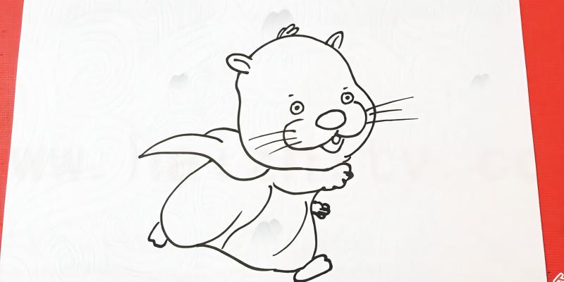 手绘动物简笔画之画仓鼠管家