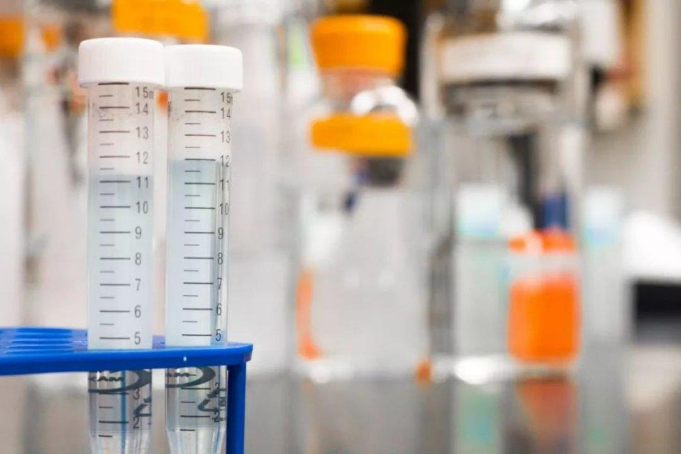 """宏海国际注册:以色列科学家称""""一年内彻底"""
