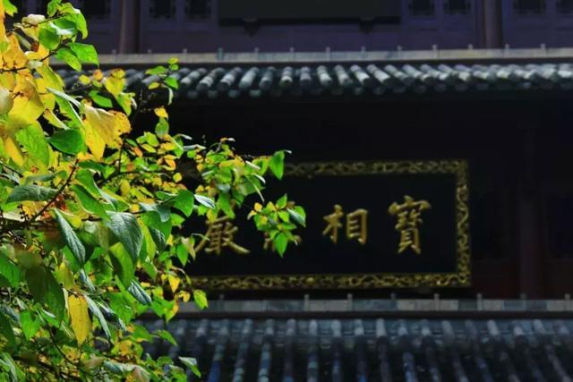 据说有境界的人,百分之九十九都读过这些禅诗