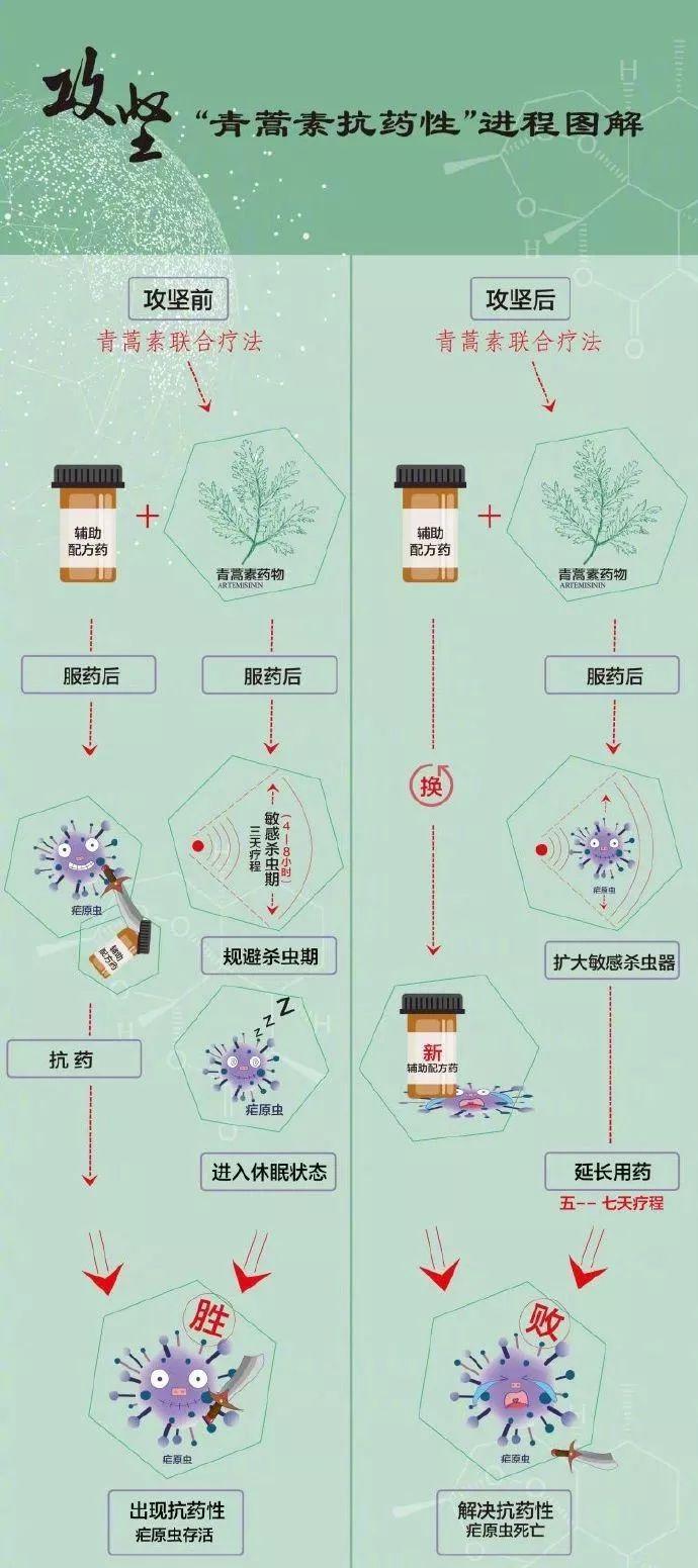 """華為Mate30外觀曝光,618促銷禁用""""今日特惠"""""""