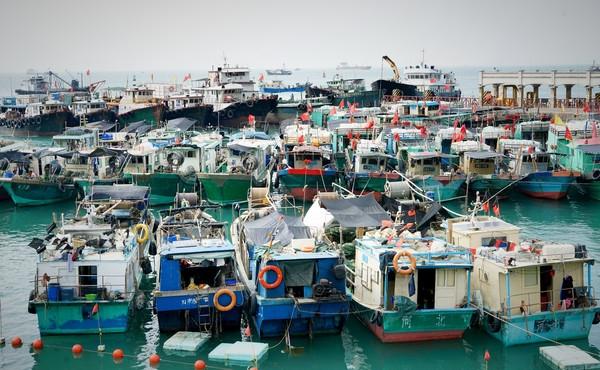 从蛇口坐船出发,去年深圳航运集团开通了蛇口-外伶仃岛的直航航线,大