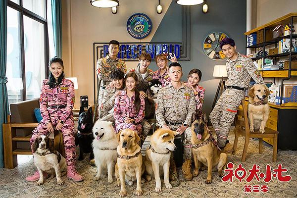 《神犬小七3》:萌宠题材或将成为国产新IP