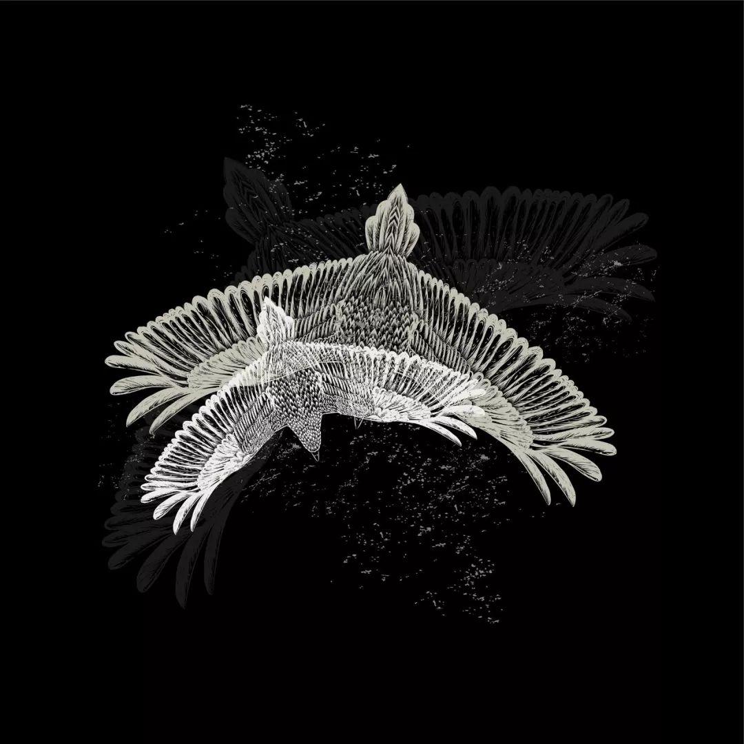 由线条组成的动物类图案,简洁个性,这些随性的线条表达着设计师对艺术