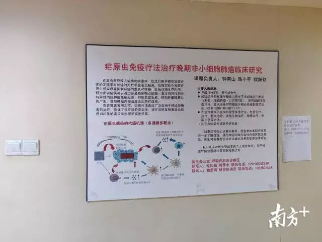 治愈癌症,疟原虫治癌,钟南山,陈小平