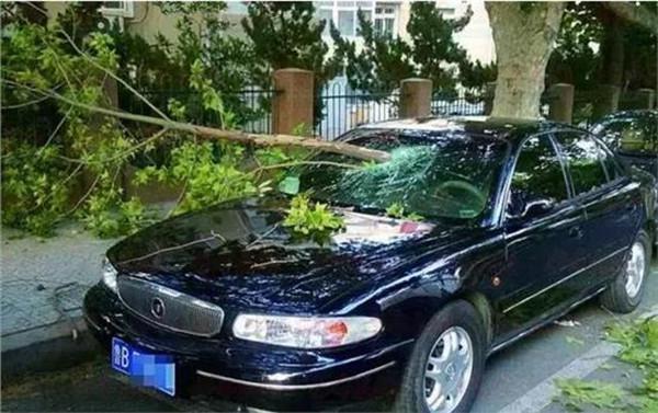 花最少的钱买最有用的车险,聪明人只选择这4种!