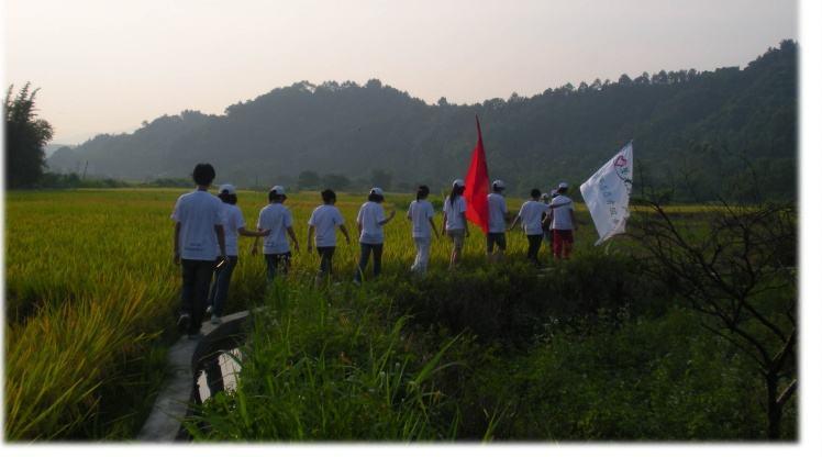 """共青团中央:3年内组织1000万人次学生志愿""""三下乡""""社会实践"""