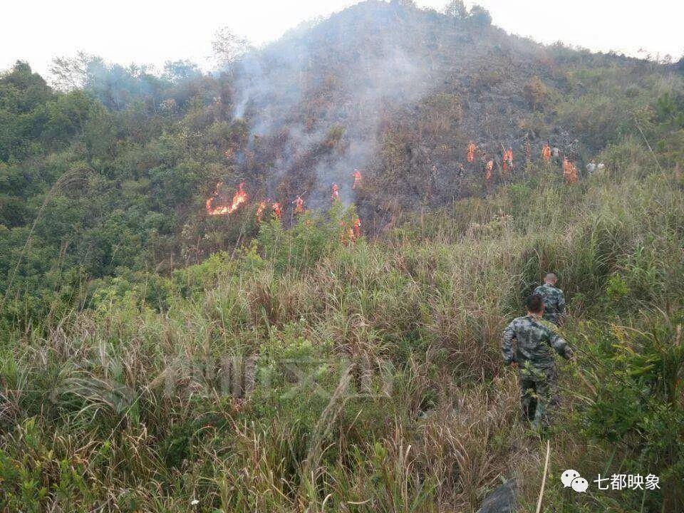 <strong>上午9点,经过300多人17个小时的努力,大火已经</strong>