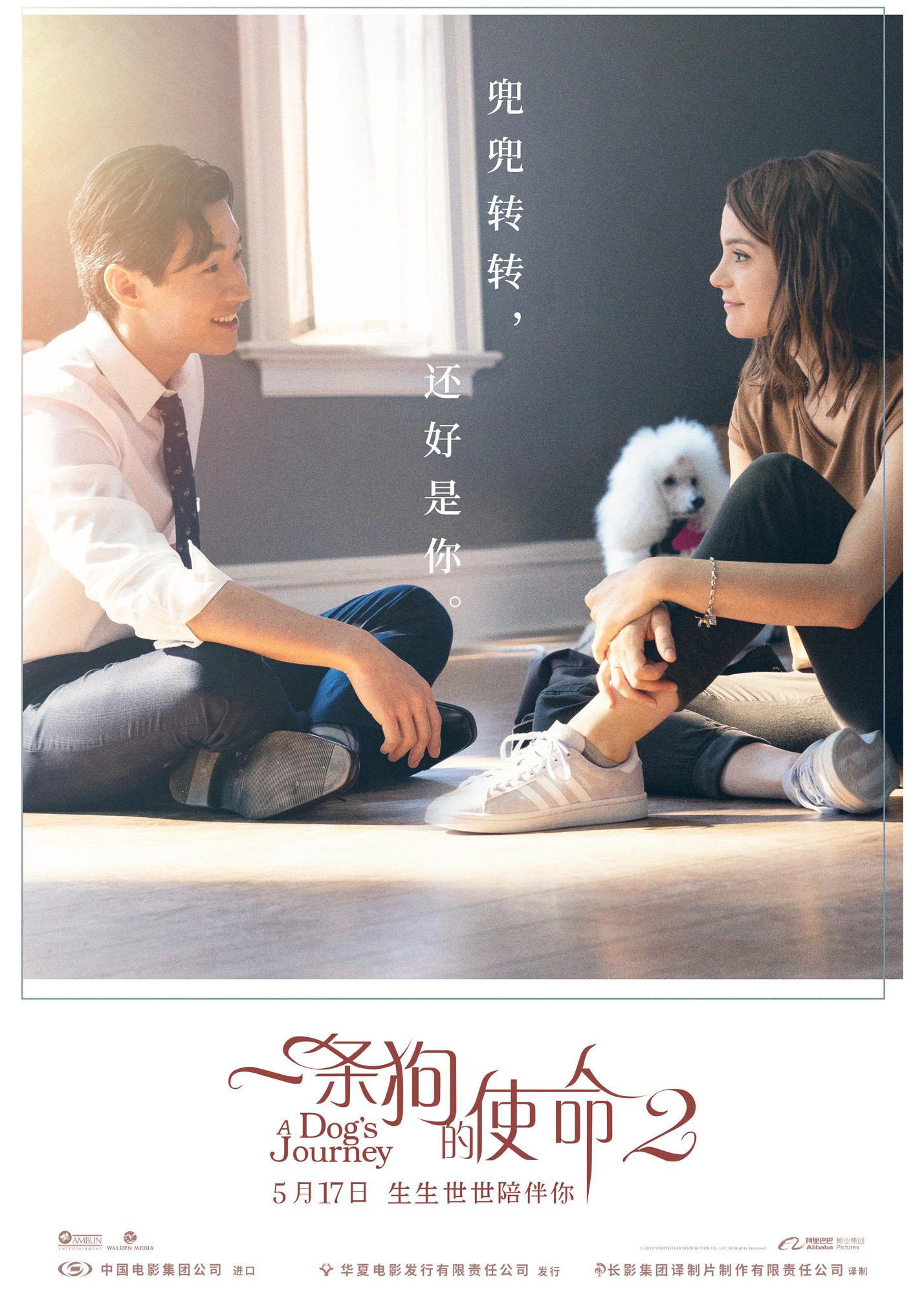 催泪巨制《一条狗的使命2》热映 刘宪华暖心加盟