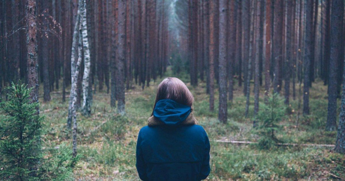 你为了自由能付出什么?美国奇人隐居森林的第27年