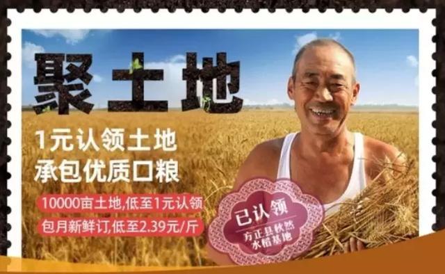 1块钱承包东北一片地,两万亩东北有机大米已被全国吃货预定