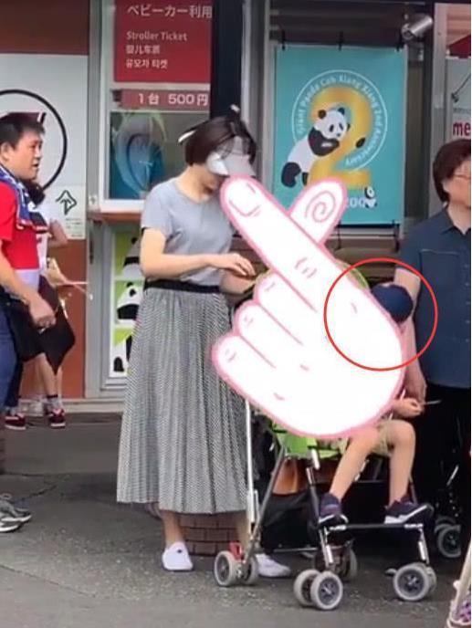 董卿带儿子低调游日本,打扮似大妈,身旁男子贴心照顾