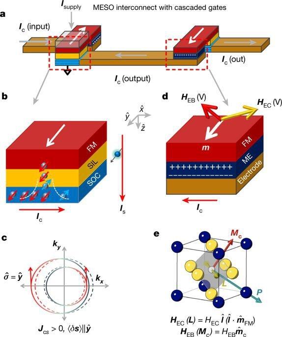 稍微偏离中心的铁与氧相互作用形成电偶极子(p),它与原子(m)的磁自旋