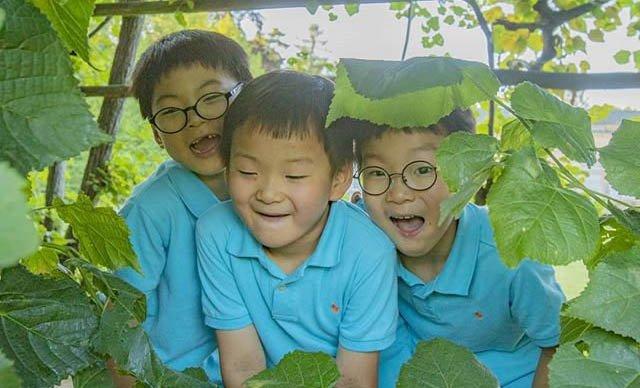 韩国表情包三兄弟旧照曝光,网友从小萌到大 娱乐前线 第8张