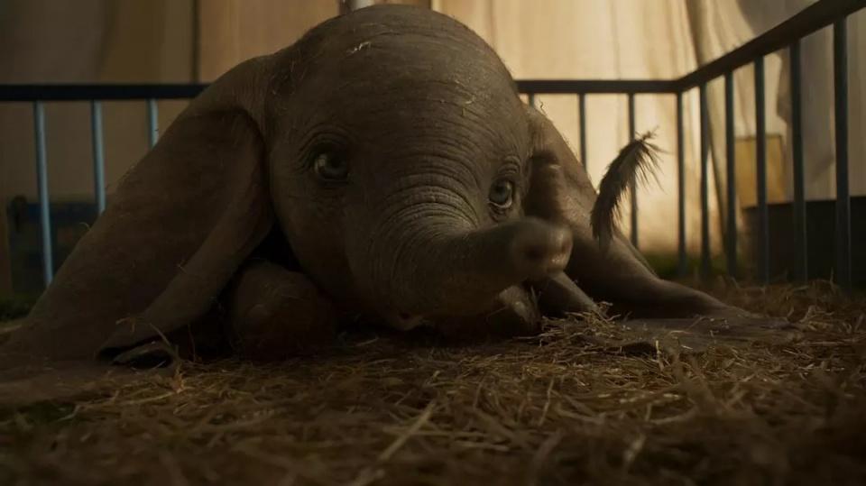 迪士尼真人版《小飞象》发新预告 大幼象互动心爱