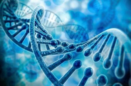 人造什么会患癌?是基因题目照样外源性因素?