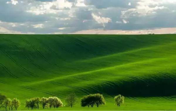 非周末-周末|有一种旅行,叫周末去坝上草原撒野