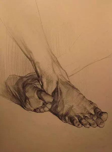 单个脚的练习 比如: 眼睛结构 ▼ ▼ ▼ 如何画耳朵?