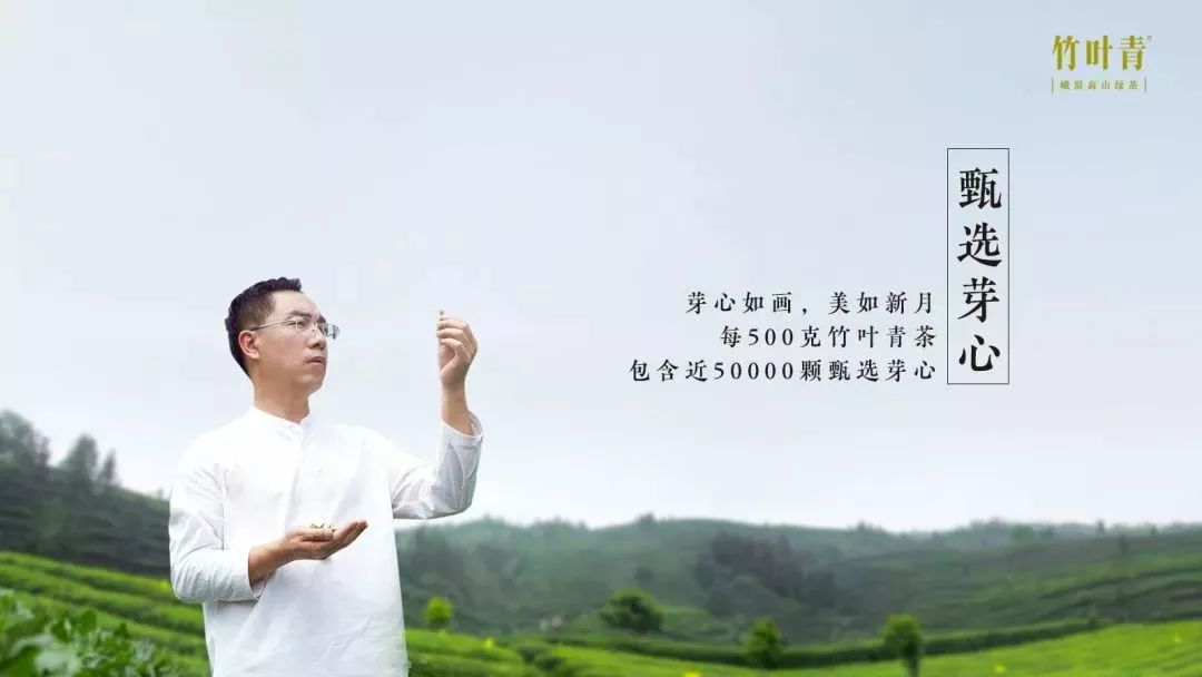 刘嘉玲送给梁朝伟、林青霞的春茶竹叶青,到底有多大牌? 娱乐前线 第14张