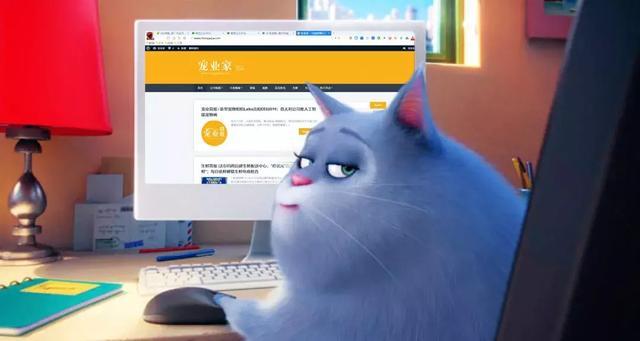 """Steam将上线宠物养成游戏;_南宁现宠物""""酒店"""" - 宠业简报"""