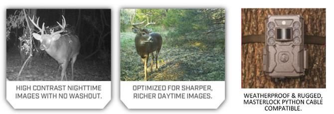 博士能推出四款野生动物摄影机,丛林深处的记录者