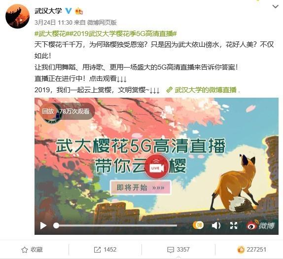 武漢大學開展5G高清直播這才是賞櫻花的正確姿勢!