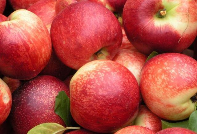 夏天吃桃子好处多多,但吃桃子7大禁忌,怎么预防吃桃子过敏?