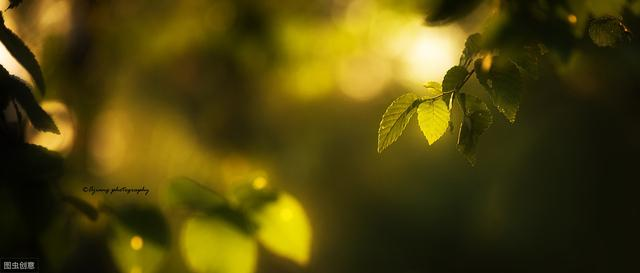 宋末诗人刘辰翁优美诗词7首,夜来处处试新妆。却是人间天上