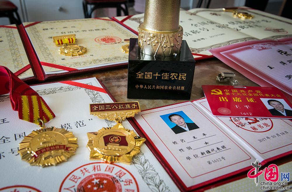 【边疆党旗红】从打工妹到十九大党代表川妹子扎根兵团带头致富-中国网地产