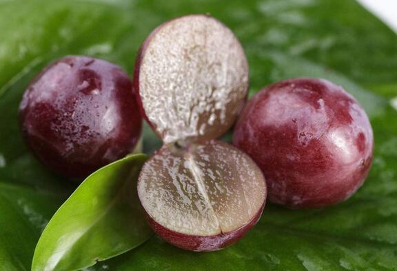 """葡萄表皮的""""白霜""""是农药?真相竟然是这样……"""