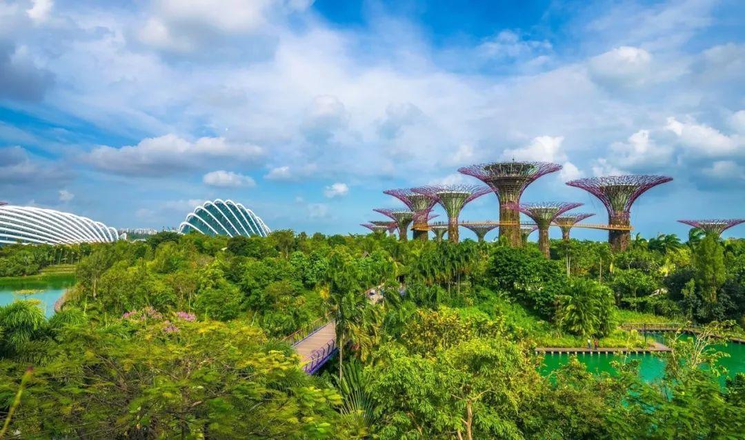<b>50张图,12个绝美绿色建筑!新加坡让全球惊艳</b>